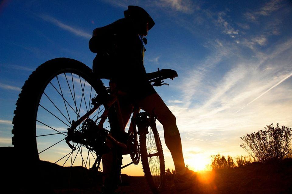 bike dory